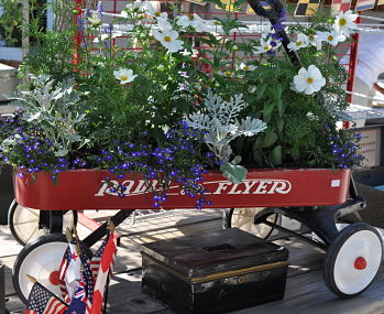 Greenhouse Design Radio Flyer with Annuals