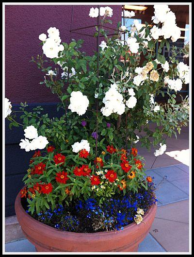 Office Max Flowering Pots