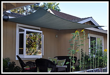 Shade Sail Over Deck
