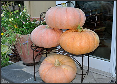 4 great pumpkins