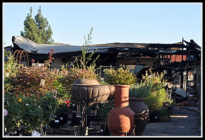 SummerWinds Plants and Pottery