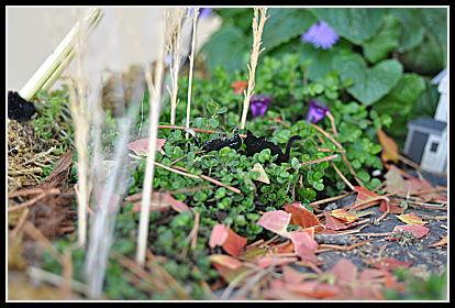 Fairy Garden Cats