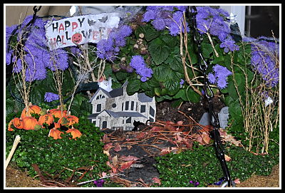 fairy garden with pumpkins