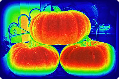 heat map pumpkin