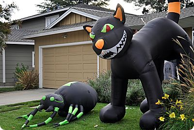 inflatable cat and spider