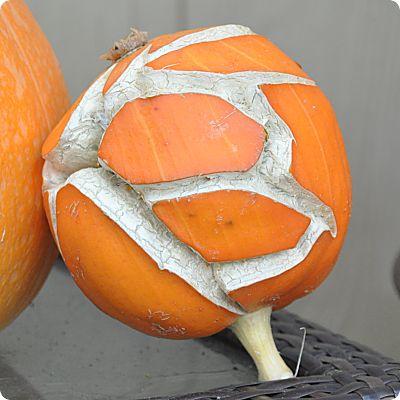 The letter B pumpkin