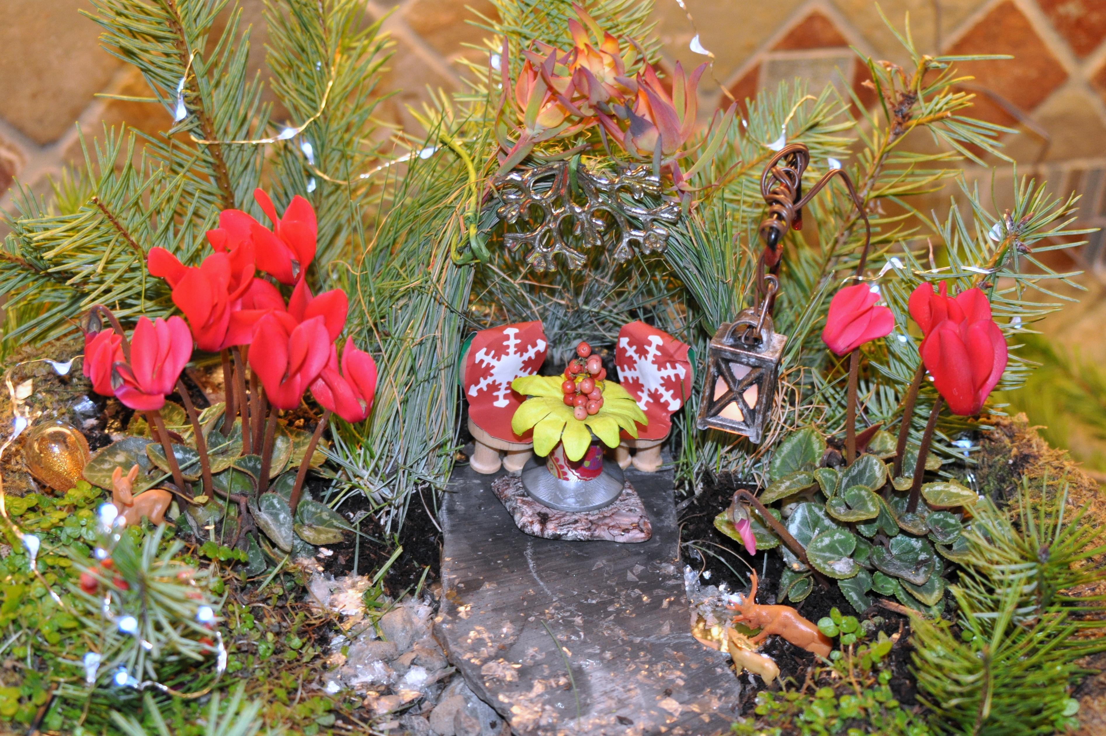 Sprucing Up the Fairy Garden