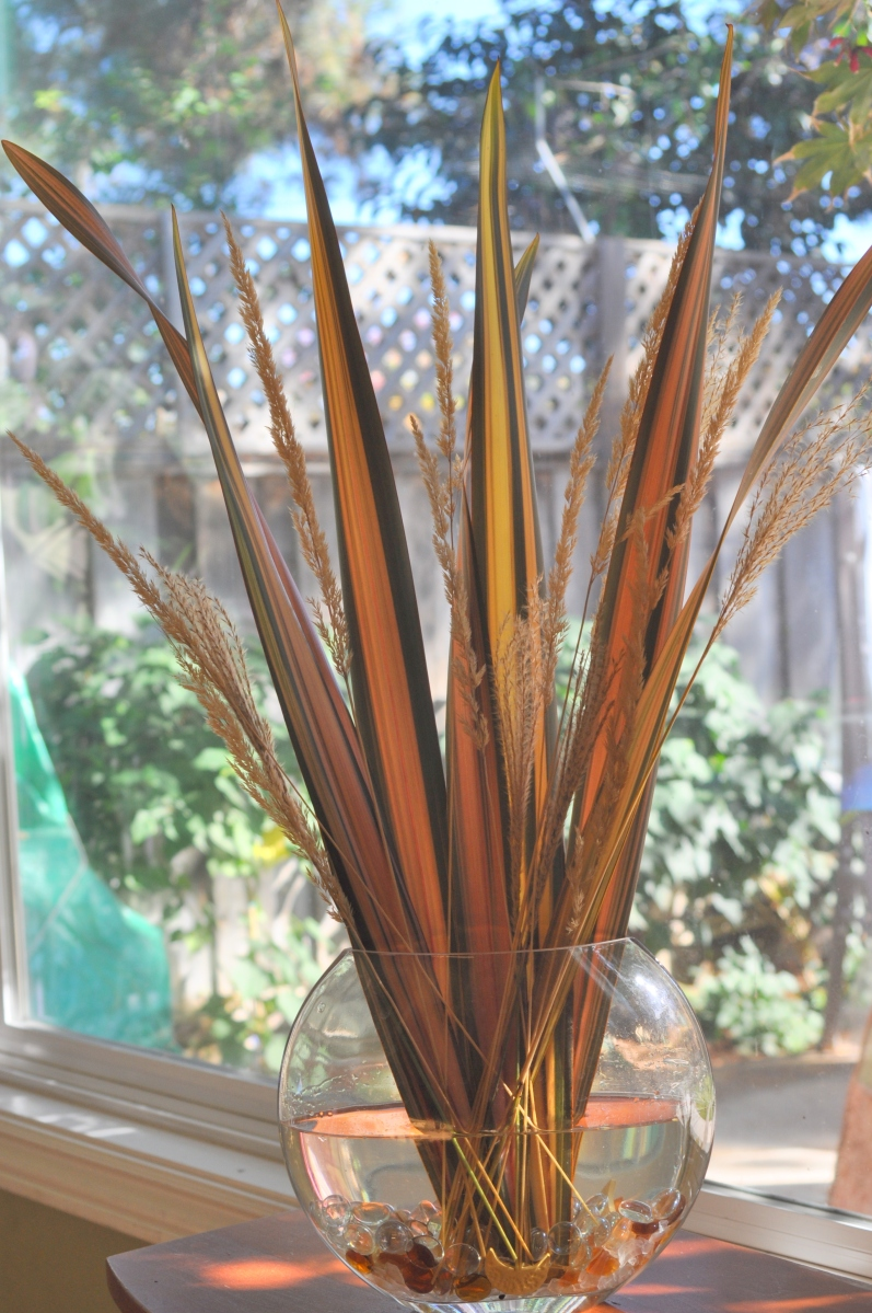 New Zealand Flax with Grasses