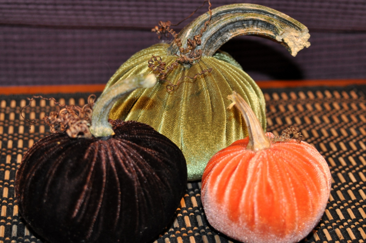 Velvet Pumpkins, Natural Stems
