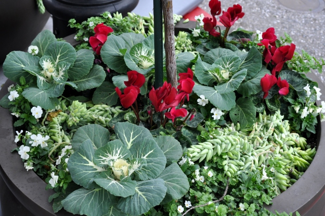 Red and Green pots