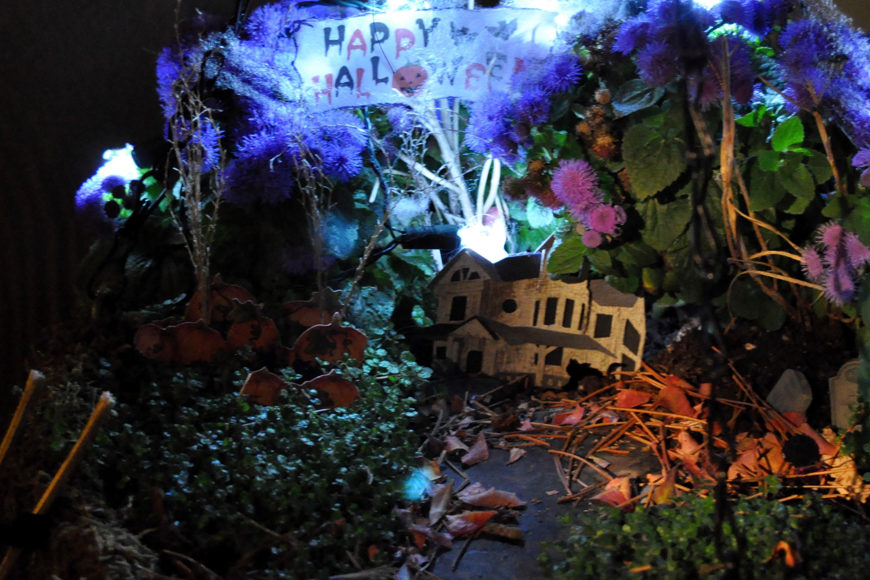 Fairy Gardens Gardening Nirvana
