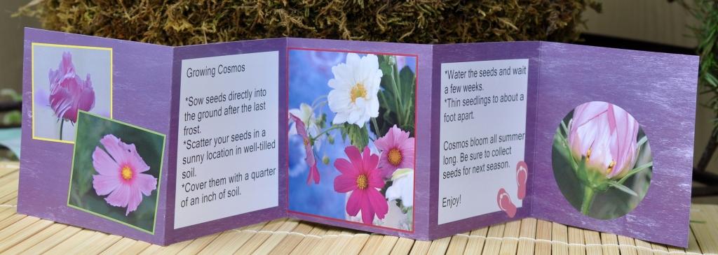 Photo Panel Card (Back)