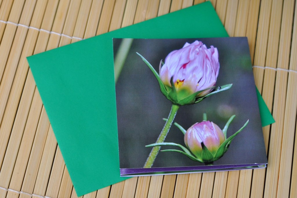 Folded Cosmo Card and Envelope