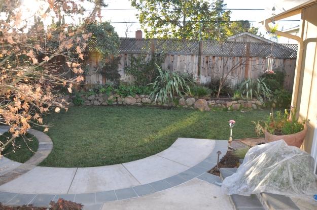 View from my back door
