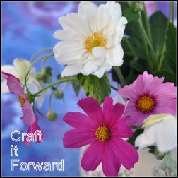 craft it forward button