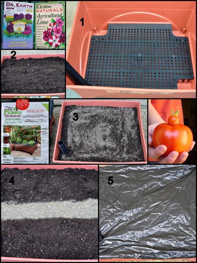City Picker Tomato Collage