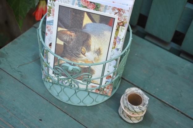 Birdhouse of Cards