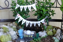 Fairy Garden Birthday
