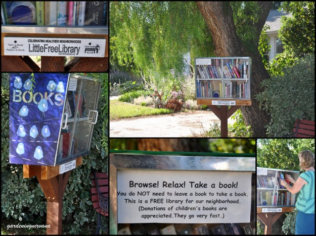 little free library collage