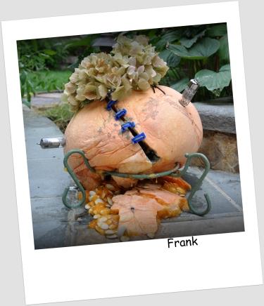 frank the pumpkin