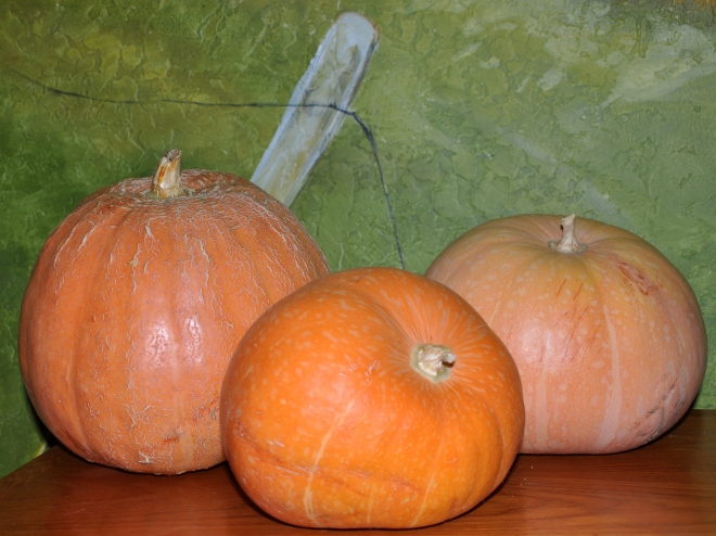 polished pumpkins
