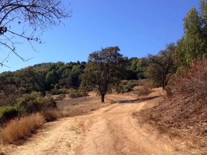 trail incline