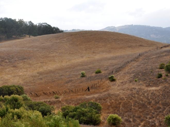 Almaden Quicksilver trail view