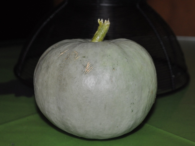 light green pumpkin