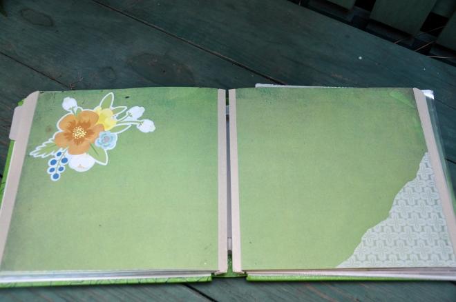 garden journal page 5