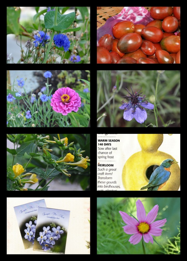 flower seed labels