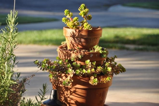 tower of pots succulents