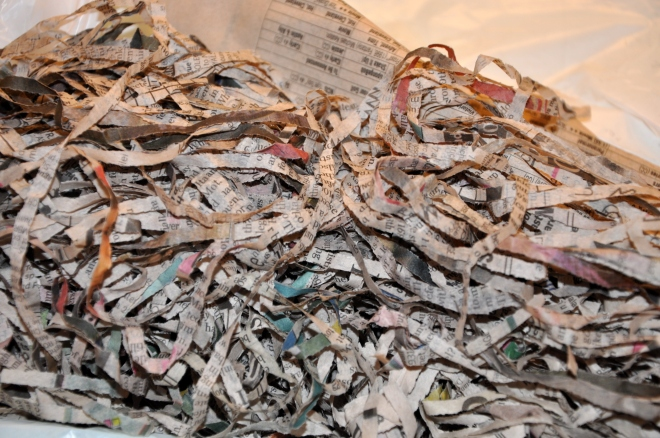 damp shredded newspaper