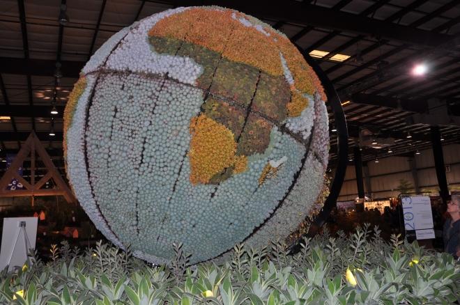 succublent globe