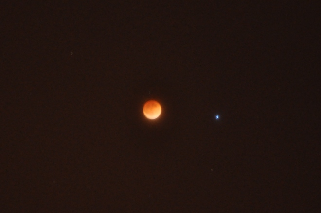 Full Blood Moon: 12:50 am