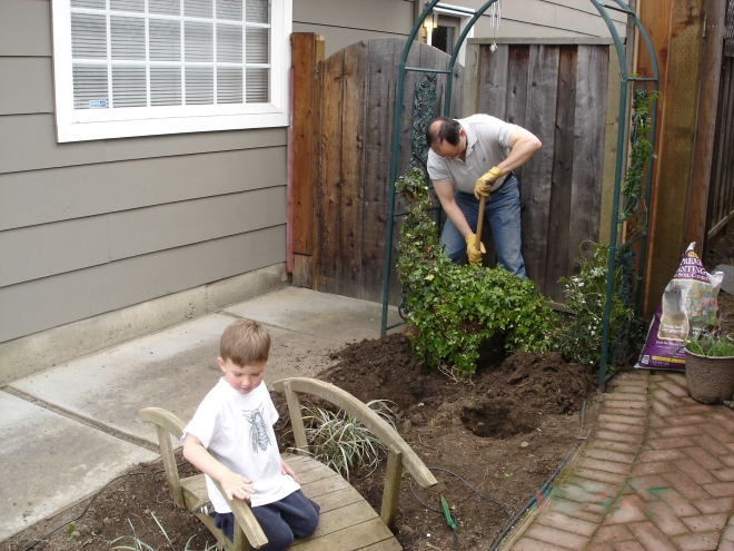 planting the children's garden