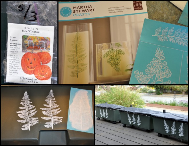 Seed packets, stencils and the finished boxes