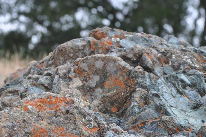 orange rock