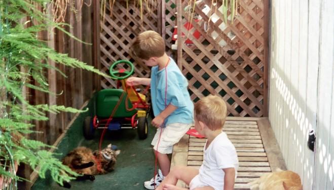 boys in sideyard