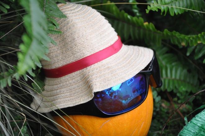 aloha pumpkin closeup