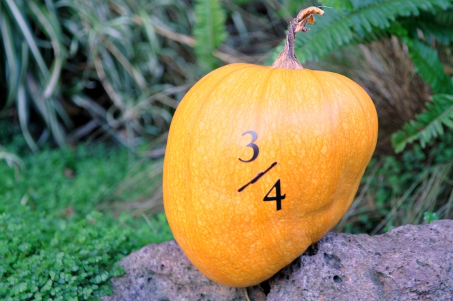three quarters pumpkin