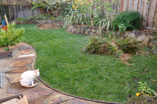 existing lawn