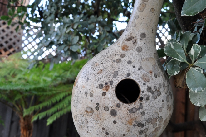 gourd with twigs