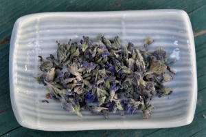 lavender flowers dried