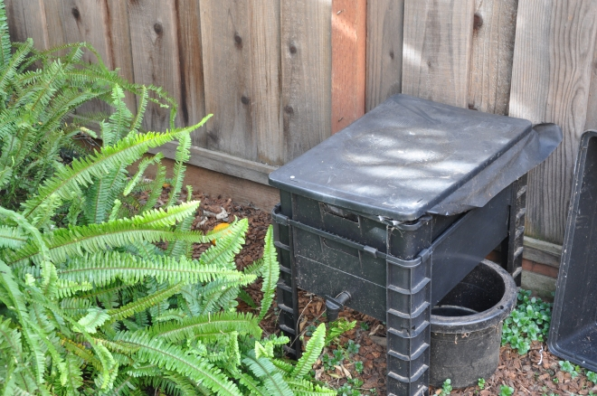 wriggly wranch worm bin