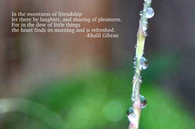 quote gibran with dew drop