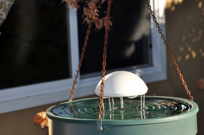 water wiggler in fountain
