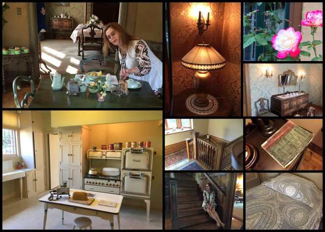 Ainsley House Collage 2015