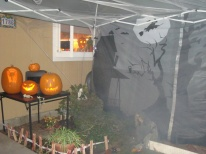 "Our ""Haunted Yard"" one year"