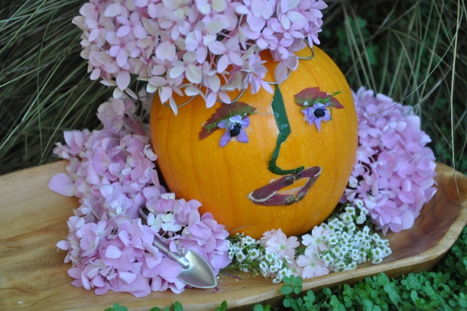 Gardening Nirvana Pumpkin