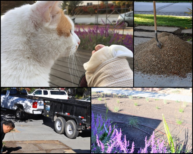 new landscaping collage front